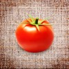 Tomatoes, Plum (small)